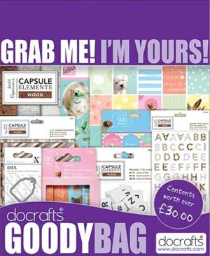 Goody Bag Every Day Theme Do Crafts