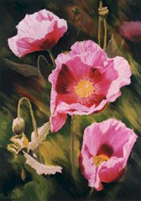 "'Poppies' 18"" x 14"" - Greeting Card"